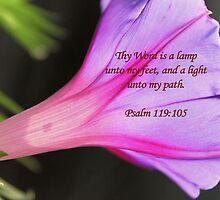 Thy Word is a Lamp Unto My Feet.... by aprilann