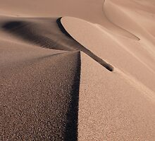 A Line in the Sand  by John  Sperry