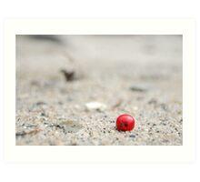 Berry on the beach Art Print