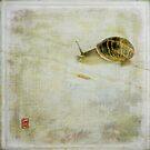 Escargot by Sonia de Macedo-Stewart