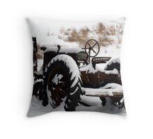 """""""Hybernation"""" Throw Pillow"""