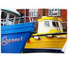 Gannet and Skylark Poster
