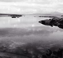 Gunters Bay by Andrew  Makowiecki