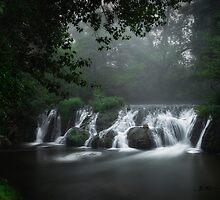 Cascade de l'Alzon by Mieke Boynton