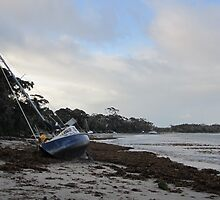 """I hate Mondays "" 2  ... (Callala Bay, NSW  6.6.12) by Lunaria"