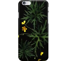 iPhone Case of painting...Buttercups... iPhone Case/Skin