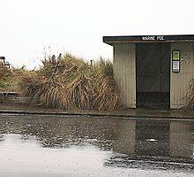 Grainy rain by Duncan Cunningham
