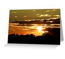Piney Sunset Greeting Card
