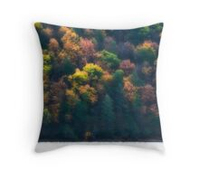 Fishing (part 1) Throw Pillow