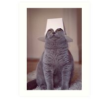 fig 1.4 - Cat with Chinese takeaway box on head Art Print