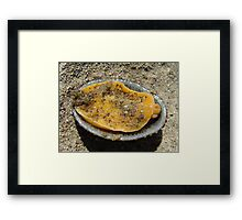 Got Muscles? Framed Print