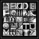 Savannah Alphabet - Black and White, square by Ellen  Hagan