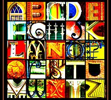Savannah Alphabet - Bright, square by Ellen  Hagan