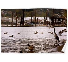 Heron on the Willamette Poster