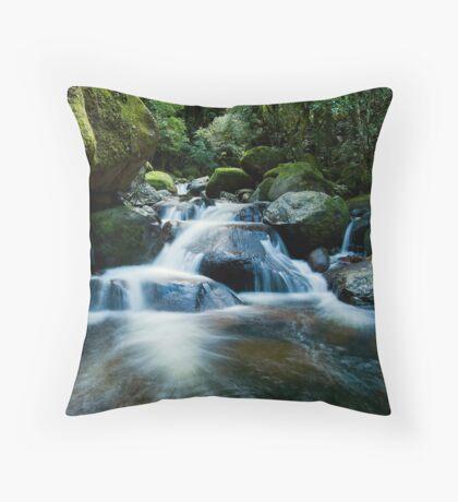 Wairere fantail drift Throw Pillow