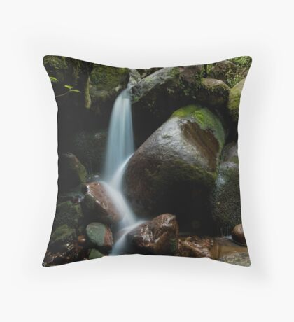 Wairere last stand Throw Pillow