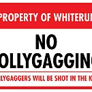 Whiterun Municipal Ordinance (Sticker) by Eozen