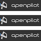 OpenPilot (rectangle x3) by spackletoe