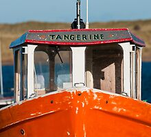 Tangerine 2 by Moonlake