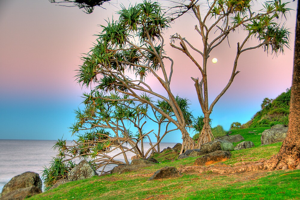 Colours At Sunset - Burleigh Headland by Nick Peters