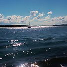 The Spit by Digby