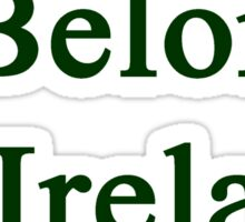 I Belong In Ireland Sticker
