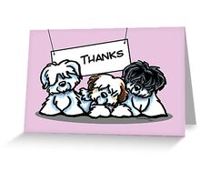 Coton de Tulear Thank You Cards Greeting Card
