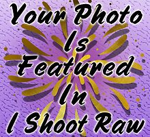 Weekly Feature banner .. I shoot raw by LoneAngel