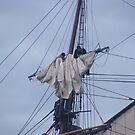 Hard at work in the Mast. by Sandra Lee Woods