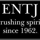ENTJ #1 by iamwholocked1