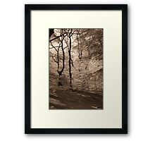 Forest Fantasy Framed Print