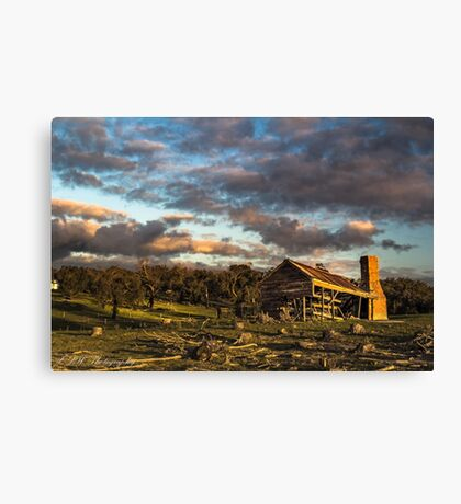 Rural Decay Canvas Print