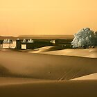 Hotel in the Sahara at Sunset, Morocco by Debbie Pinard