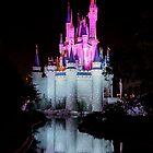 Cinderella's Castle - Pink & Blue w/reflection by Mark Fendrick