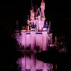 Cinderella's Castle - Pink w/reflection by Mark Fendrick