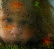 A Dreamer by Shelly Harris