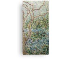Beech Pond Forest Canvas Print