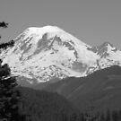 Remarkably Free - Majestic Mount Rainier in Black and White by Mary-Elizabeth Kadlub