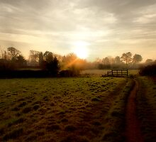 'Low Sun At Nuthall' by Rob Booth