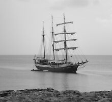 Sailing Ship Ahoy by StantonP