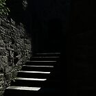 The Castle Steps by DHParsons