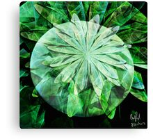 Structure of a Flower Canvas Print