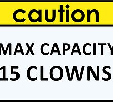 Max Capacity by Gina Mieczkowski