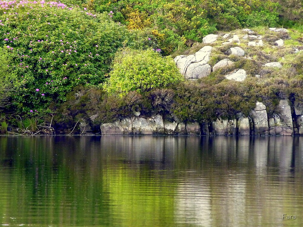 Across A Donegal Lake by Fara