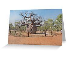 Boab Prison Tree Greeting Card