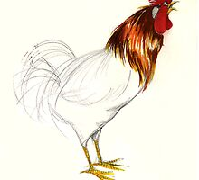Who You Callin' Chicken? by Sandy Taylor