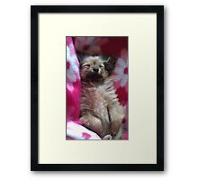 Sally bo-peep Framed Print