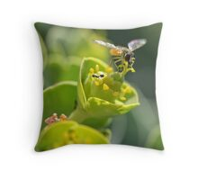 bee in flight color detail shot flowers Throw Pillow