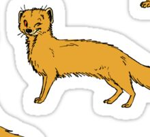 Yellow Mongoose sticker set 1 Sticker