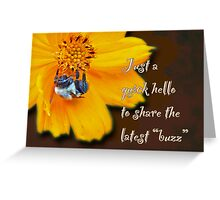 Hello Greeting Card - Cosmos and Bee Greeting Card